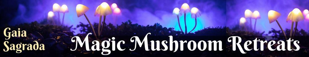 Magic Mushroom Retreat in Jamaica - Gaia Sagrada