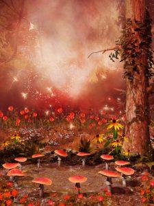 magic mushroom retreat